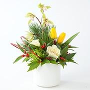 高知産シンビジウムのお正月アレンジ/ラウンド・グリーンの商品画像