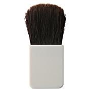 Cheek Brush For Case