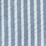 BLUE*STRIPE