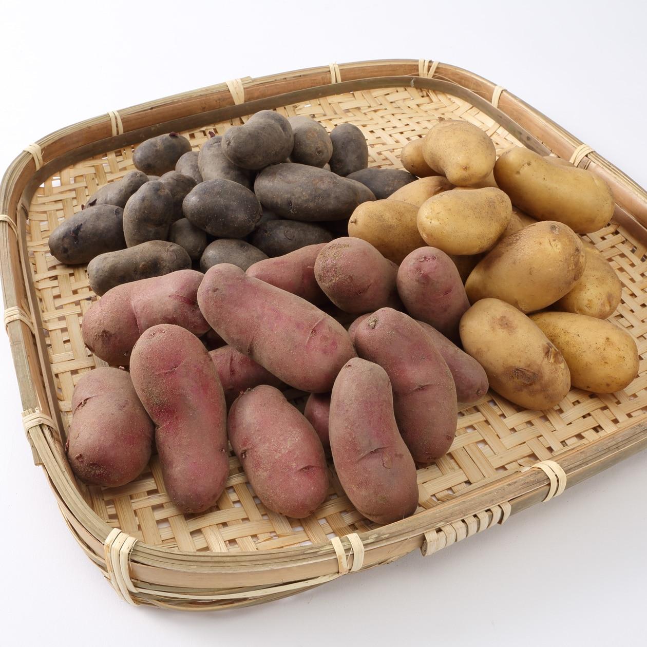 千葉県一宮町産 化学肥料・農薬不使用のジャガイモ詰め合わせ