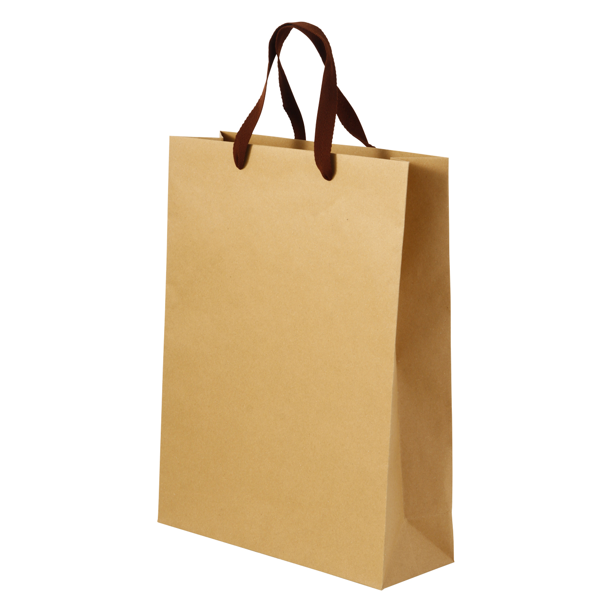 Recycled Paper Craft Bag Household