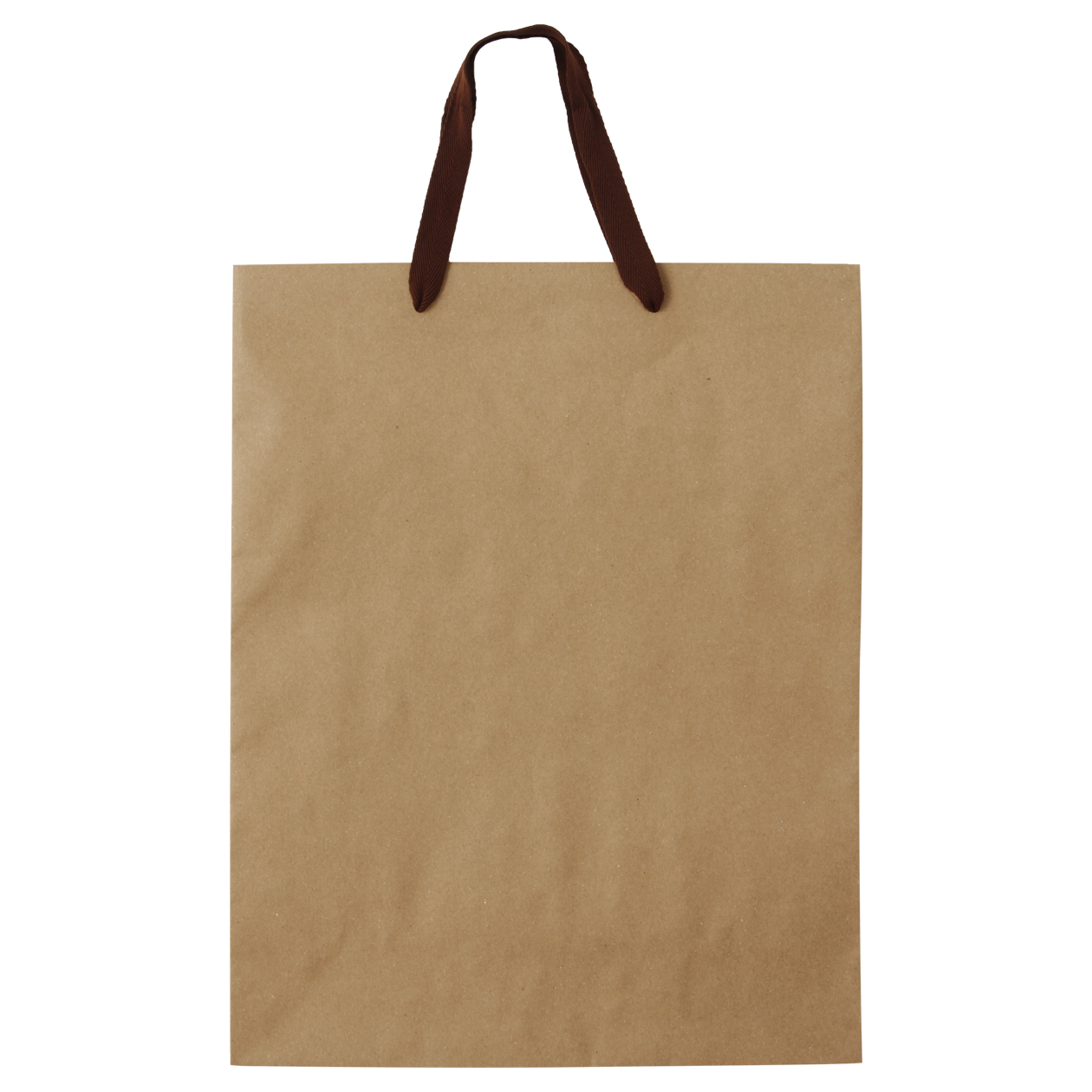 Recycled Paper Craft Bag