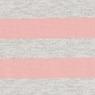 ライトピンク×ボーダー