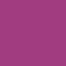 0.5mm・紫・10本セット