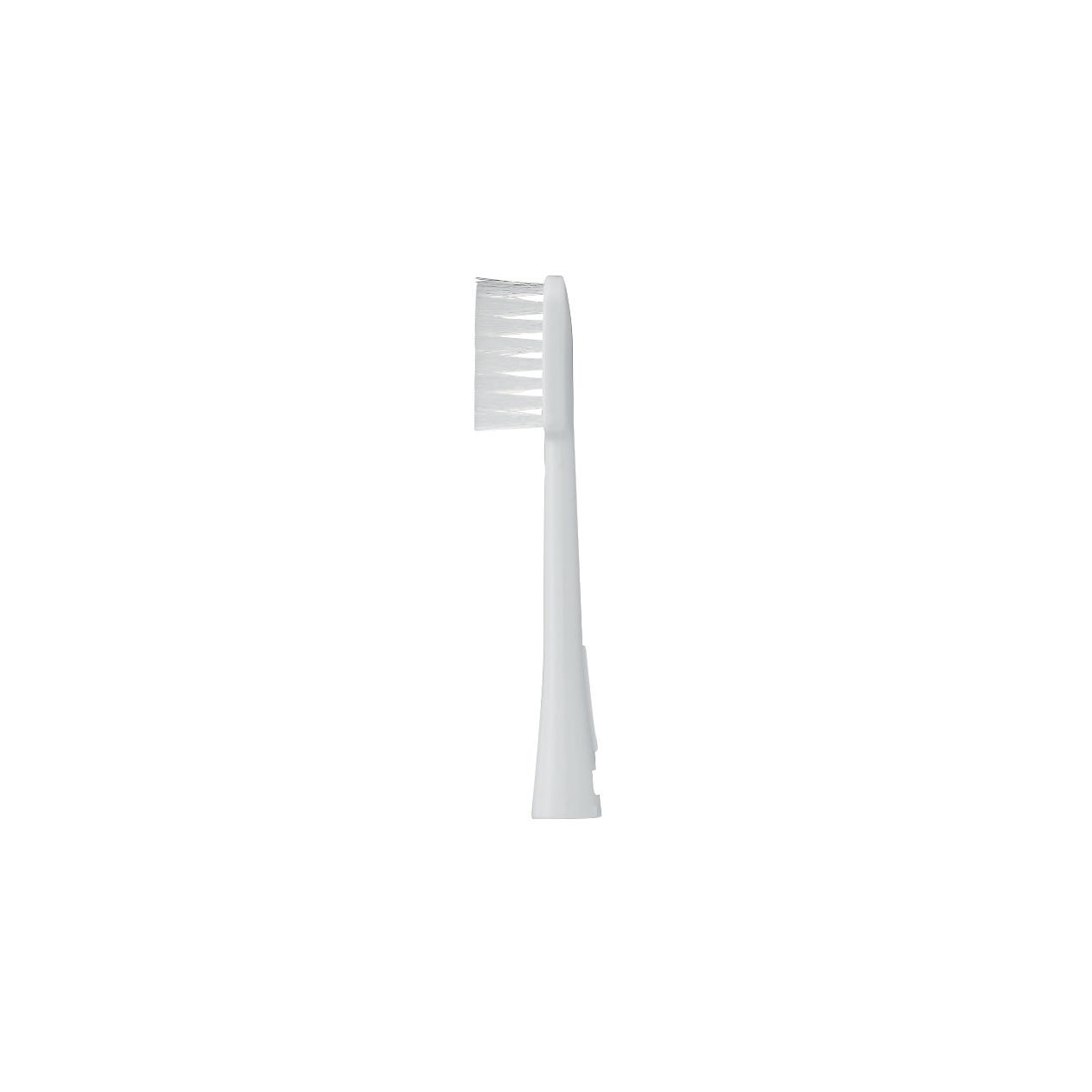 【パーツ】電動歯ブラシ用スペアブラシ